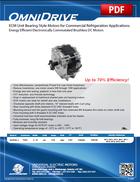 ECM Unit Bearing