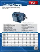 NEMA Premium (Cast Iron TEFC)