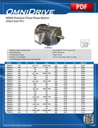 NEMA Premium (Rolled Steel TEFC)