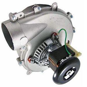 # A051 - 1/60 HP, 115 Volt